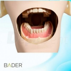 Articulador New Tipe JT44 Tecjnoflux