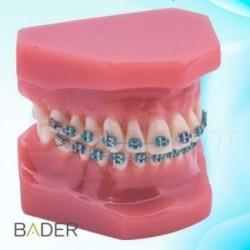 Mezcladora de alginato Technoflux