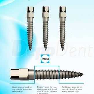 Ligaduras elásticas color Natural surtido Medicaline