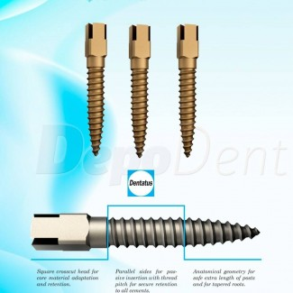 Blanqueamiento dental PolaDay 6% 4x1