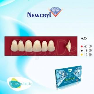 Cubas de limpieza por ultrasonidos ESTMON TCE-220 electronic series
