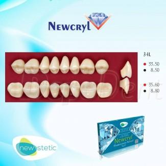 Dientes acrílicos ESTEINVIT 4 capas cromáticas molde N17