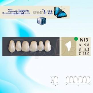 Dientes acrílicos ESTEINVIT 4 capas cromáticas molde N22