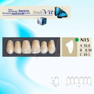 Dientes acrílicos ESTEINVIT 4 capas cromáticas molde N27